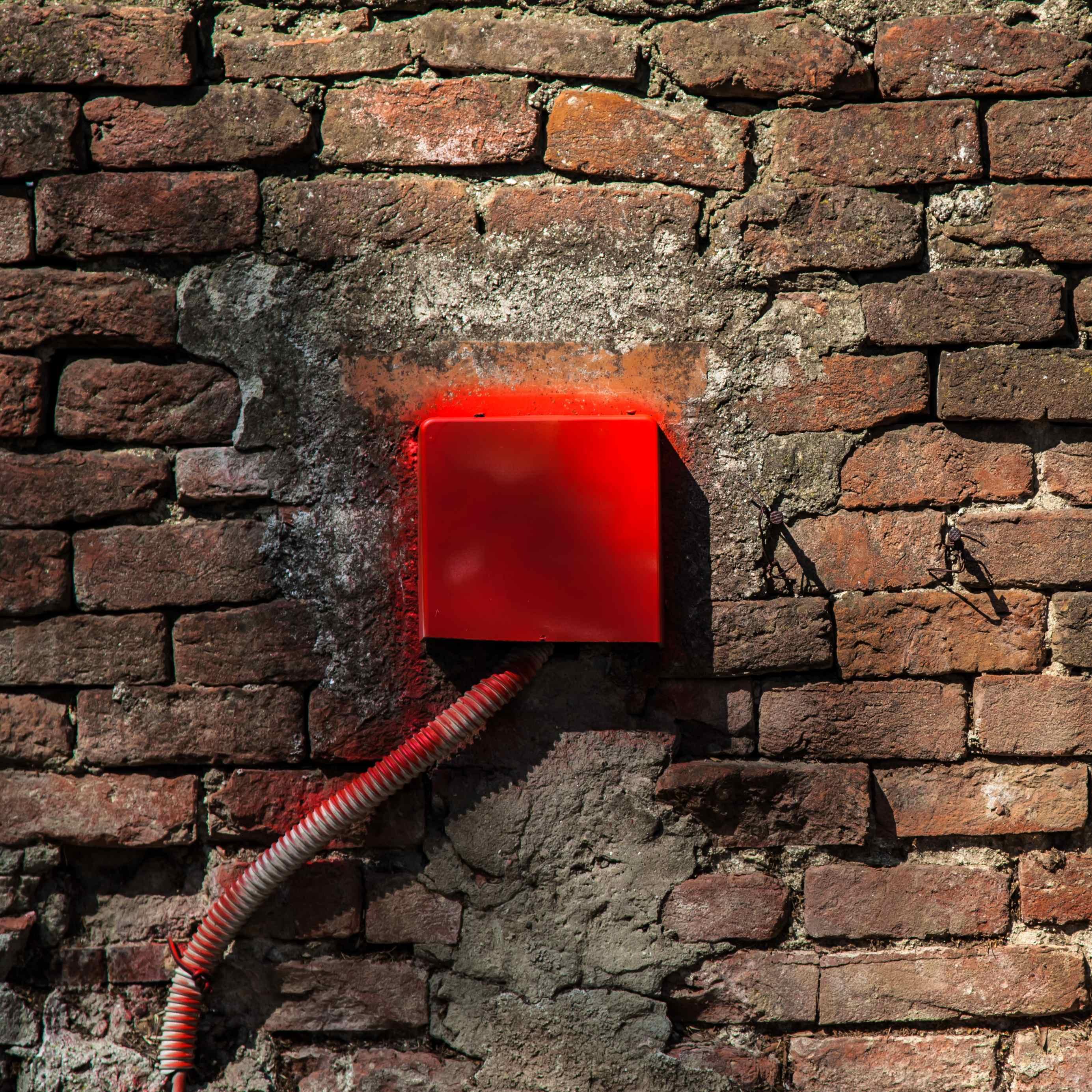 Voci dalle Mura
